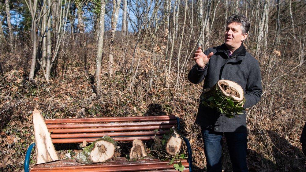 Jan Boni, ingénieur forestier, explique que les arbres malades peuvent devenir dangereux.