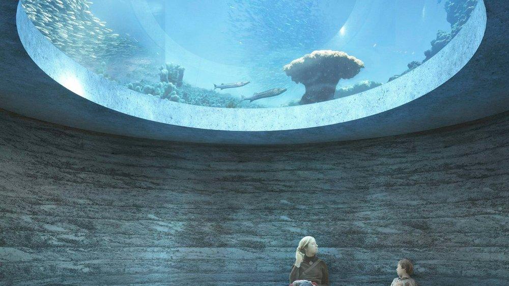 Selon Tanja Dietrich, porte-parole du Zoo de Bâle, «le référendum lancé à Bâle n'est pas dirigé contre l'Ozeanium, mais contre tous les zoos».