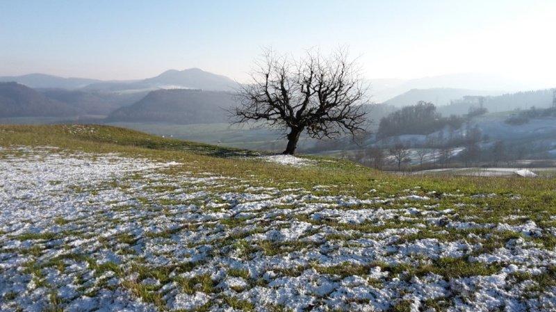 Météo de janvier: un froid record en montagne au Nord des Alpes, une douceur jamais vue au Sud