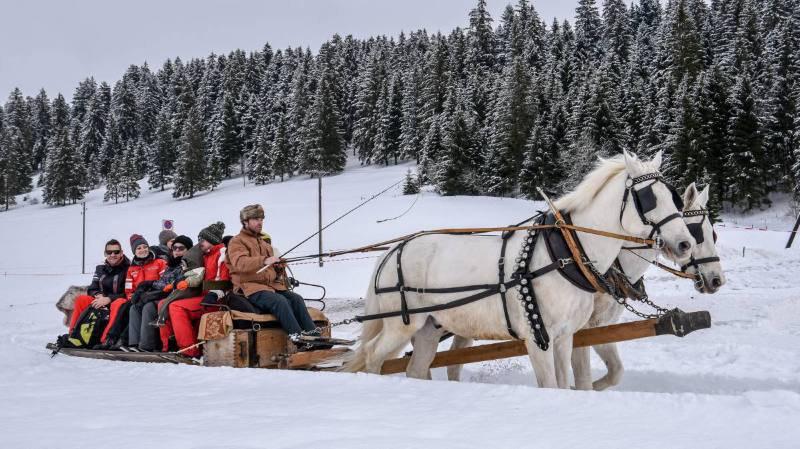 Les chevaux d'attelage ont ravi les amateurs de balades lors de cette Fête du froid, à la Brévine.
