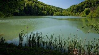 Découverte d'un corps dans l'étang de Lucelle