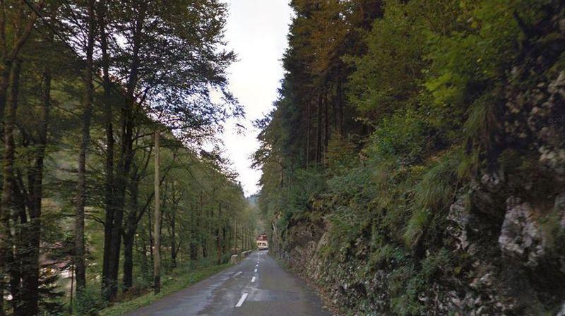 Des coupes d'arbres seront effectuées le long de la route.