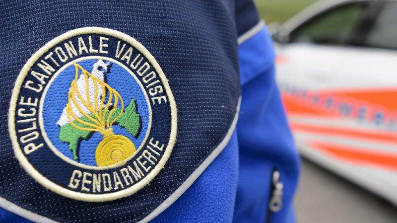 Un arbre est tombé sur la tête de l'homme de 72 ans à Commugny (Vaud). La blessure lui a été fatale.