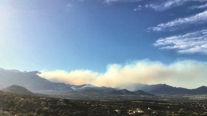 Des centaines d'hectares de végétation sont déjà partis en fumée.