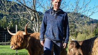 Un agriculteur neuchâtelois reçoit le feu vert pour abattre lui-même ses vaches