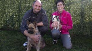 Bôle: semaine mouvementée pour Kiwi, berger allemand de la SPA