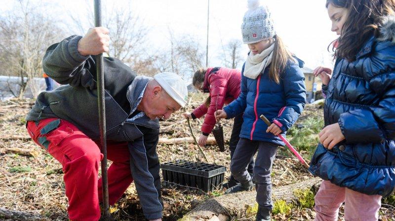 Les enfants assistés des gardes forestiers, puis de la population locale, ont planté quelque 680 jeunes chênes, ce mardi à La Tène.