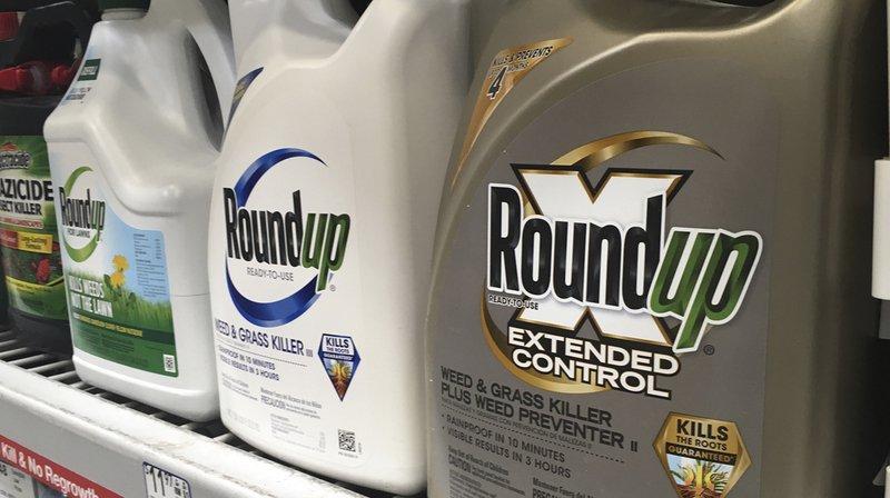 Monsanto n'aurait pas prévenu les usagers du risque cancérigène de son désherbant, qui contient du glyphosate.