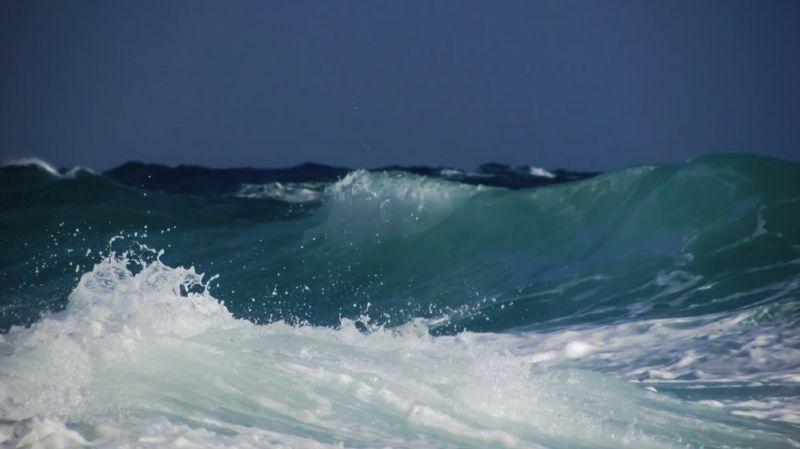 La capacité des océans à stocker le CO2 rend un fier service à l'humanité en freinant le changement climatique. Cela a toutefois un prix: ils s'acidifient.