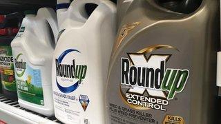 Le Roundup jugé cause d'un cancer