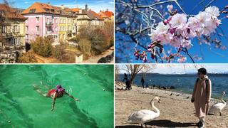 C'est le printemps, aussi sur les réseaux sociaux des Neuchâtelois