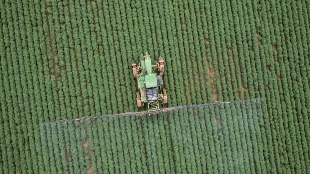 Le Mato Grosso, au Brésil, connaît une utilisation massive des pesticides, dont l'atrazine de Syngenta.