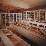 """Exposition : """"Le cabinet aux merveilles de Boudry"""""""