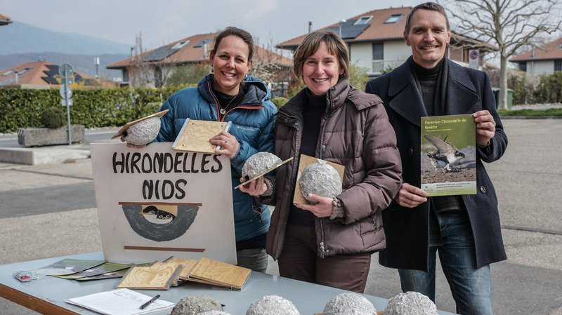 Le Groupe nature de La Tène a distribué une cinquantaine de nids d'hirondelles à des habitants de la commune.