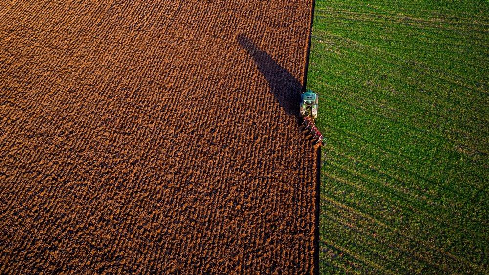 La demande de produits bio a explosé aux Etats-Unis, qui doivent importer massivement, l'offre ne suivant pas.
