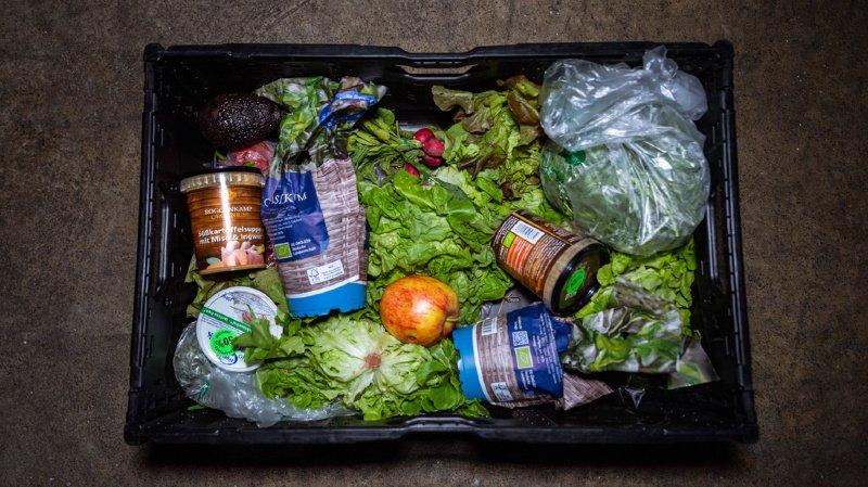 Gaspillage alimentaire: chaque habitant produit 60 kilos de déchets qui pourraient être évités