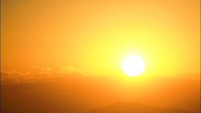 La vie, perpétuel mouvement d'énergie - conférence