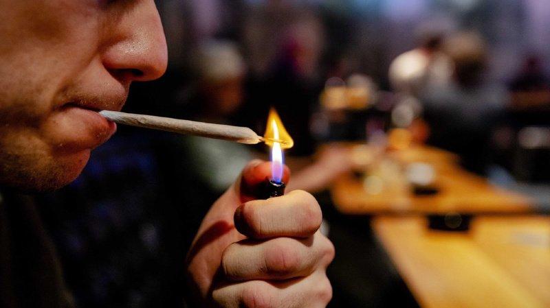 Une commission en faveur d'essais pilotes pour le cannabis