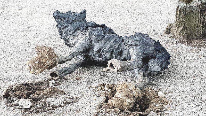 Les trois statues de loups de la Collégiale ont été renversées