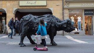 Les bufflonnes de bronze feront leur retour à Neuchâtel