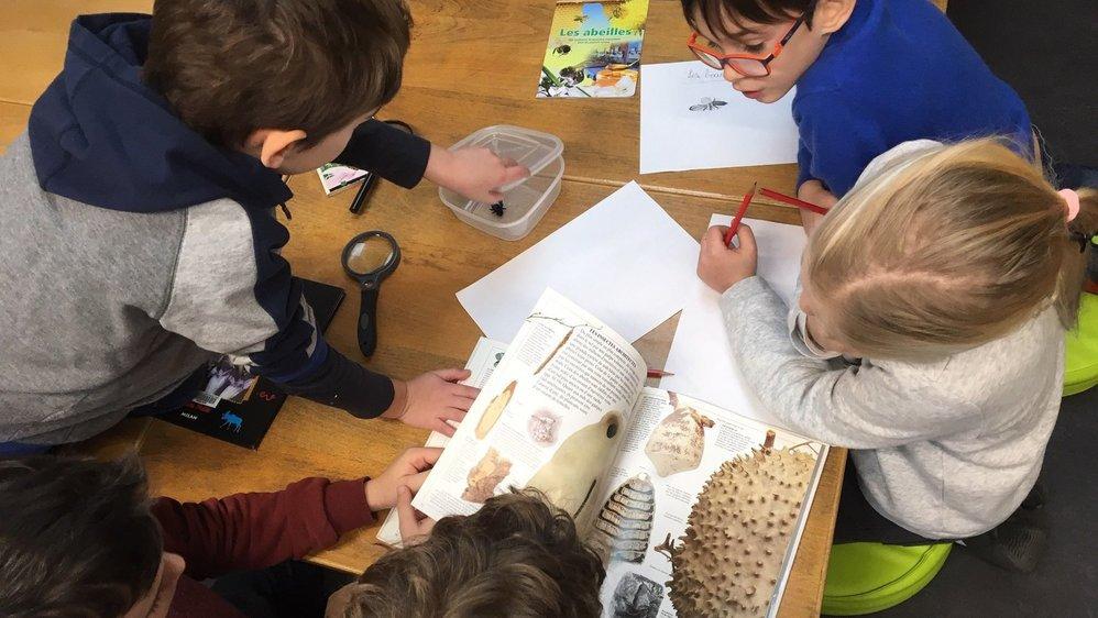 La méthode Montessori, dispensée par l'Ecole internationale de Neuchâtel, a le vent en poupe.