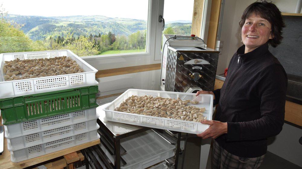 Des locaux ad hoc ont été créés pour transformer des produits. Ici des pâtes sont faites à partir des céréales qui poussent sur les hectares environnant la ferme de Cerniévillers.