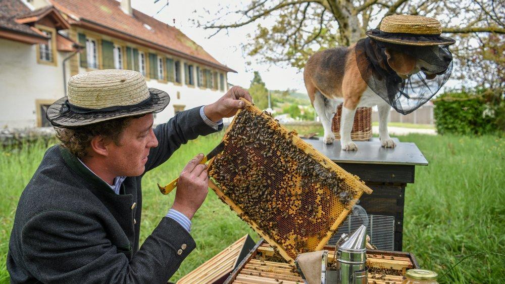 """Audric de Campeau, en compagnie de son chien """"Filou"""", s'occupe de ruches en divers endroits. Il en a 300 en ville de Paris."""
