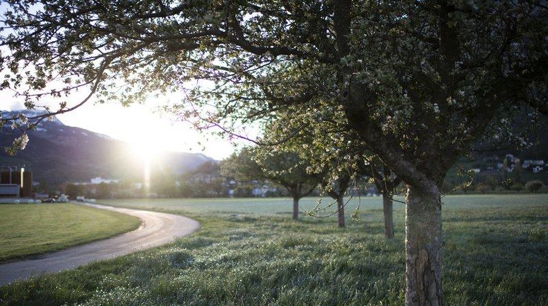 Les prévisions météo du mois de mai se sont révélées être fausses à plusieurs reprises en Suisse allemande. (Illustration)