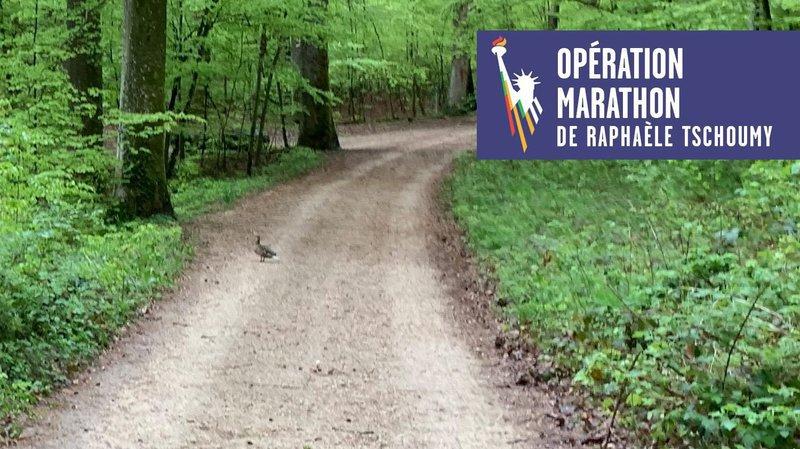 Opération marathon de New York: «Coup de frein»