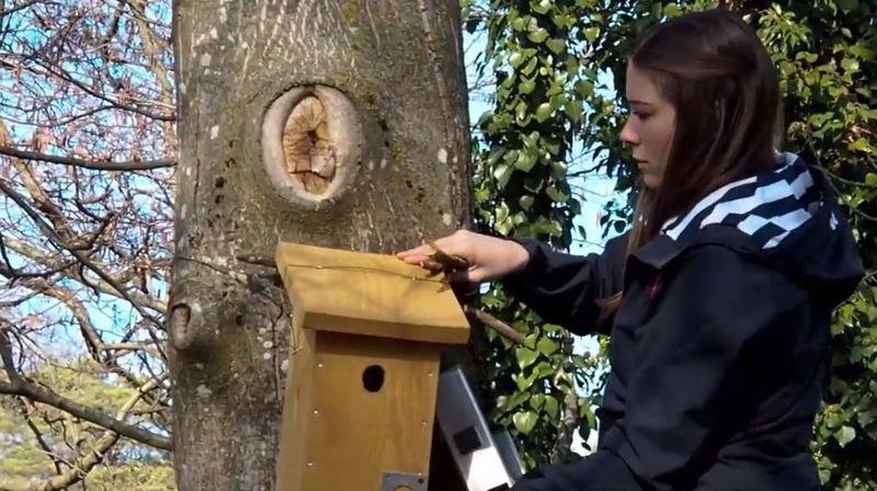 Le film primé présente les activités de l'association Sorbus en faveur de la biodiversité.