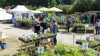 Vaumarcus: trois Journées des plantes pour sensibiliser au jardinage écolo