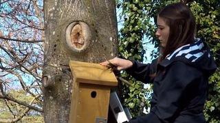 Neuchâtel: des vidéos pour valoriser des initiatives en faveur du développement durable