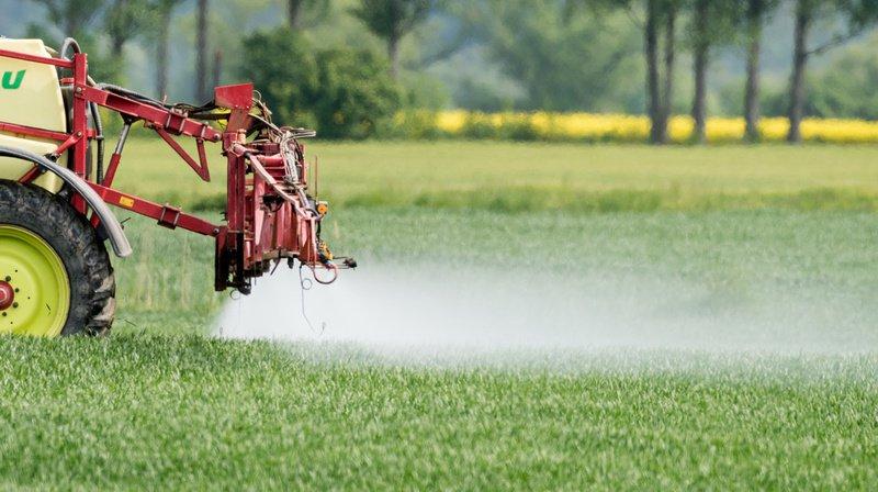 Le National balaie les initiatives contre les pesticides ainsi que les propositions de contre-projet