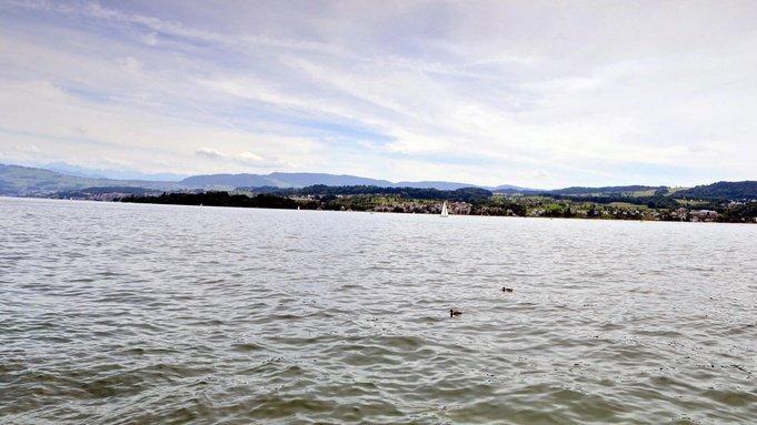 En cette période caniculaire, de nombreuses personnes se baignent dans des lacs comme celui de Zurich. Une activité qui peut être dangereuse. (Illustration)