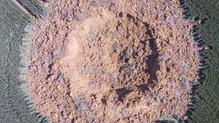 Allemagne: une bombe datant probablement de la deuxième guerre mondiale explose de nuit dans un champ