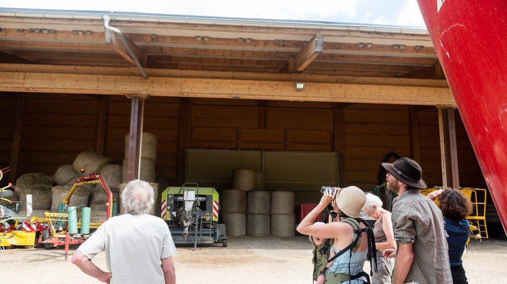 Au total, 60 nichoirs artificiels ont été installés sous l'avant-toit, en plus des nids naturels que construisent les hirondelles.