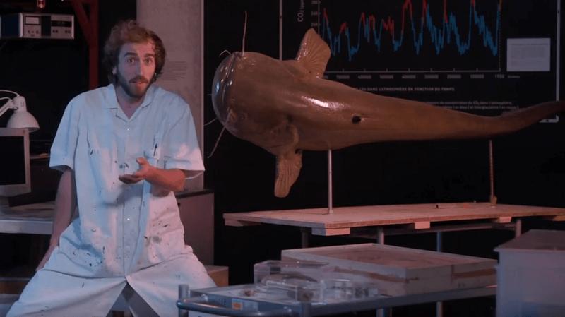 Le Muséum de Neuchâtel vous dit tout sur les espèces invasives