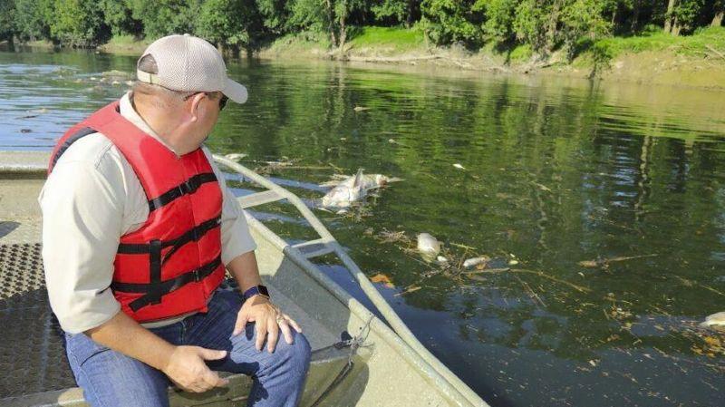 Kentucky: des milliers de poissons meurent d'une overdose de whisky après l'incendie d'une distillerie