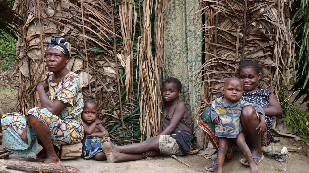 Survival international dénonce des atteintes aux droits humains dont sont victimes les Baka, peuple vivant dans le Messok Dja, une région appelée à devenir une aire protégée.