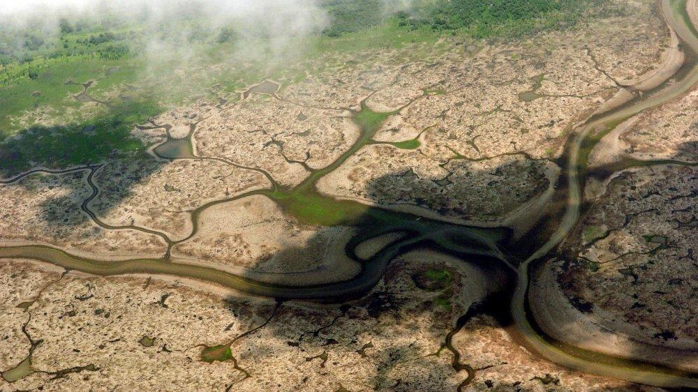 Selon les chiffres de l'Institut national de recherche spatiale – chiffres que le président brésilien, Jair Bolsonaro, conteste –, la déforestation avait été quasiment multipliée par quatre en juillet en Amazonie, par rapport au même mois de 2018.