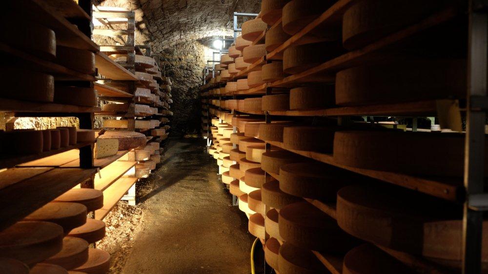 Chaque matin, le sol de la cave est mouillé pour garantir l'humidité nécessaire à un affinage parfait.