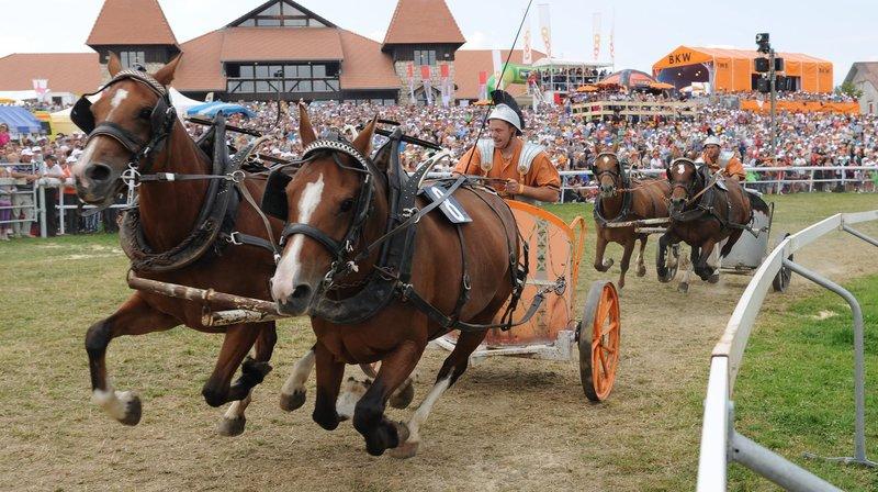 Franches-Montagnes: plus beaux gars, étalons et poulains à l'honneur durant la Semaine du cheval
