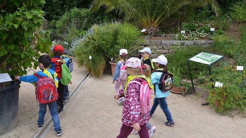 Neuchâtel: des rencontres pour parler jardinage et développement durable au Jardin botanique