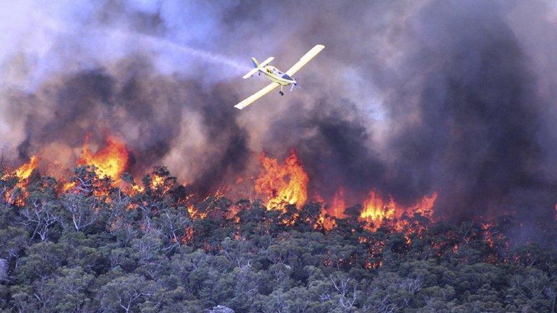 France: un bombardier d'eau s'écrase en luttant contre les incendies dans le Gard, le pilote tué