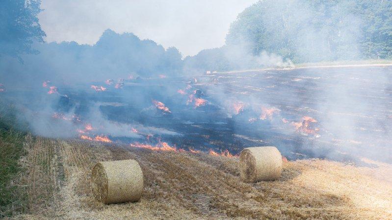 2.5 hectares de champ partent en fumée à Rochefort