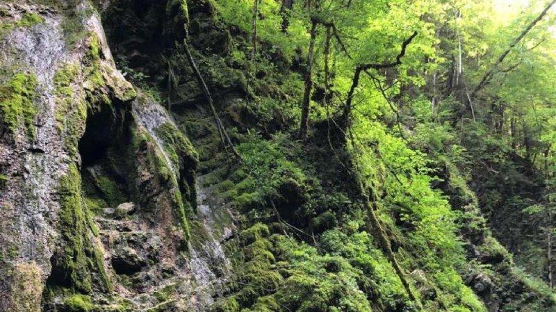 Fribourg: un homme de 44 ans chute de quinze mètres dans les gorges de l'Hongrin