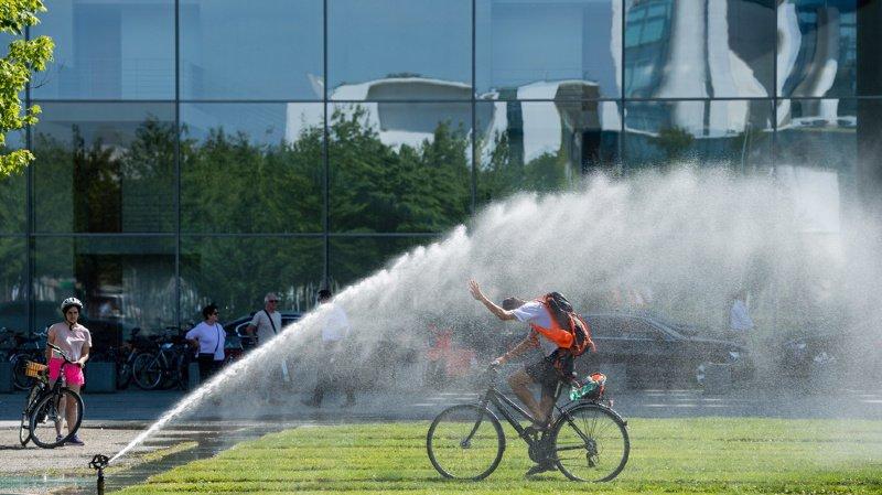 La Croix-Rouge publie un guide pour aider les villes à lutter contre les chaleurs meurtrières