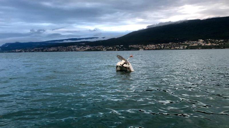 Un bateau a chaviré dimanche après-midi au large d'Hauterive.