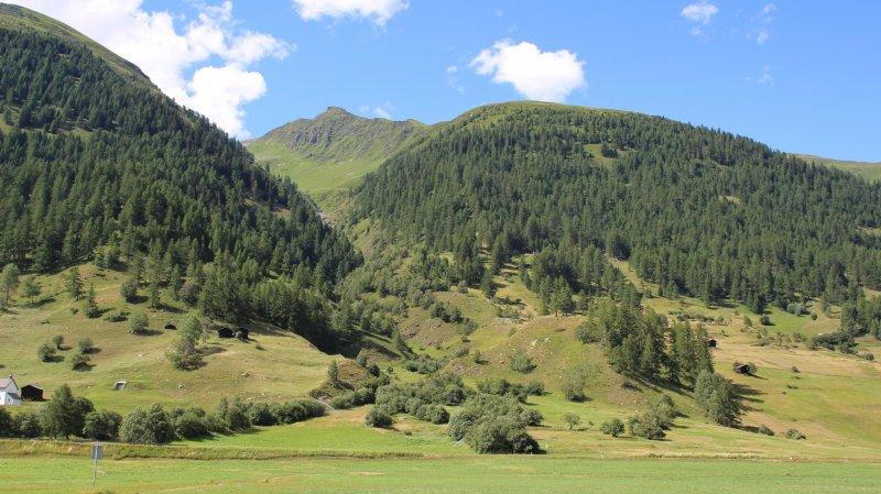 L'accident s'est produit dans la région d'Ulrichen, dans le Haut-Valais.