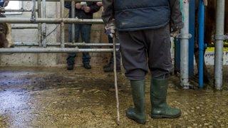 Les Brenets: peines de prison pour les paysans «esclavagistes»